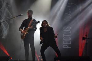 Koncert zespołu Pectus - DSC_0749