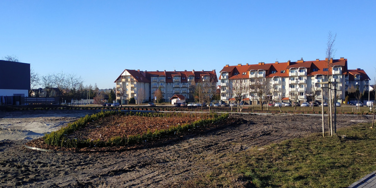 Na osiedlu Solno przy ul. Jesionowej powstaje skwer zieleni z ponad 370 krzewów. Zakończenie prac zaplanowano na koniec marca.