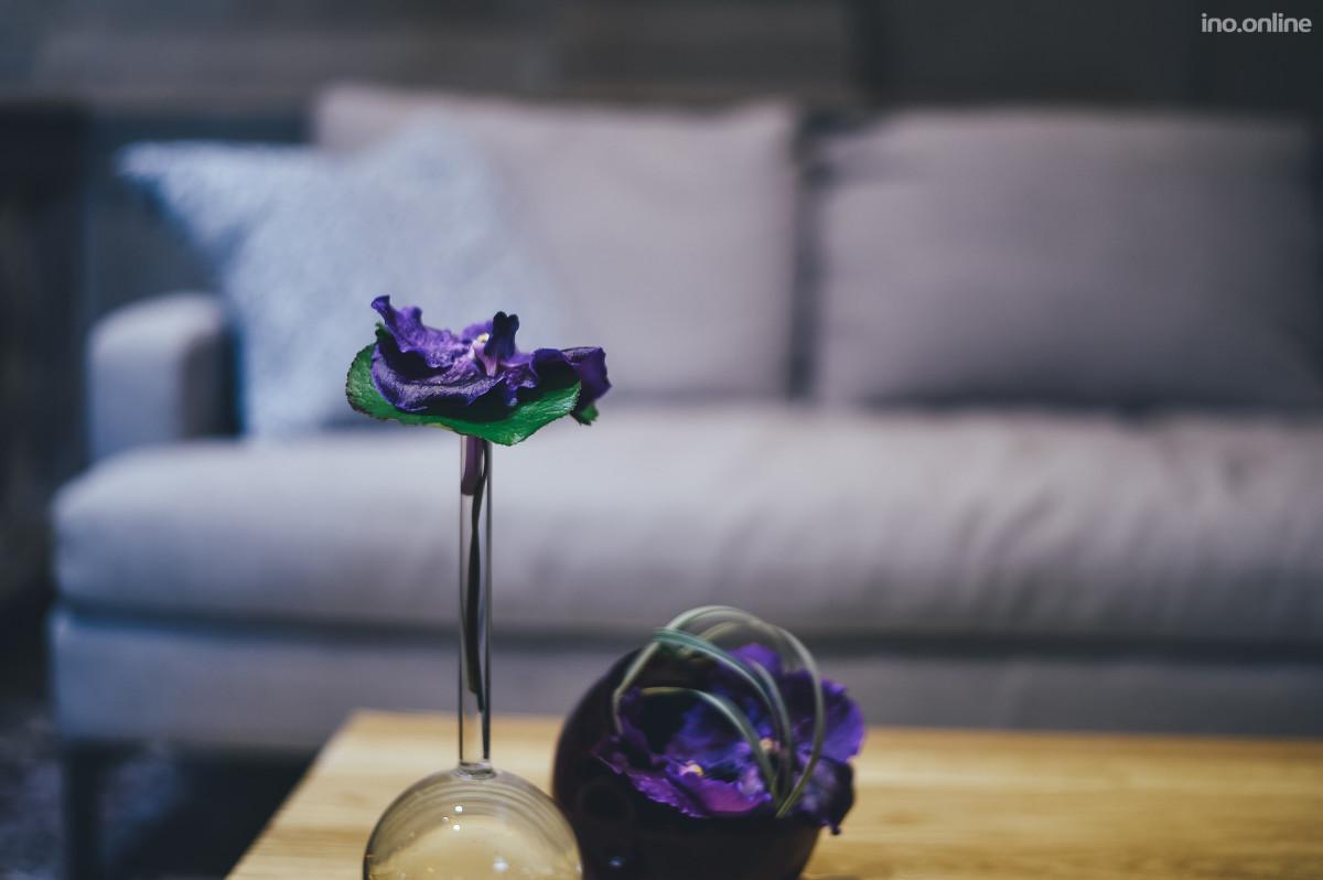 flower-2576337_1920