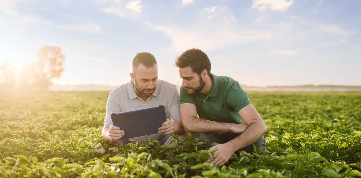Kraj - Rolnictwo regeneracyjne odpowiedzią PepsiCo na aktualne zagrożenia dla światowego systemu żywnościowego