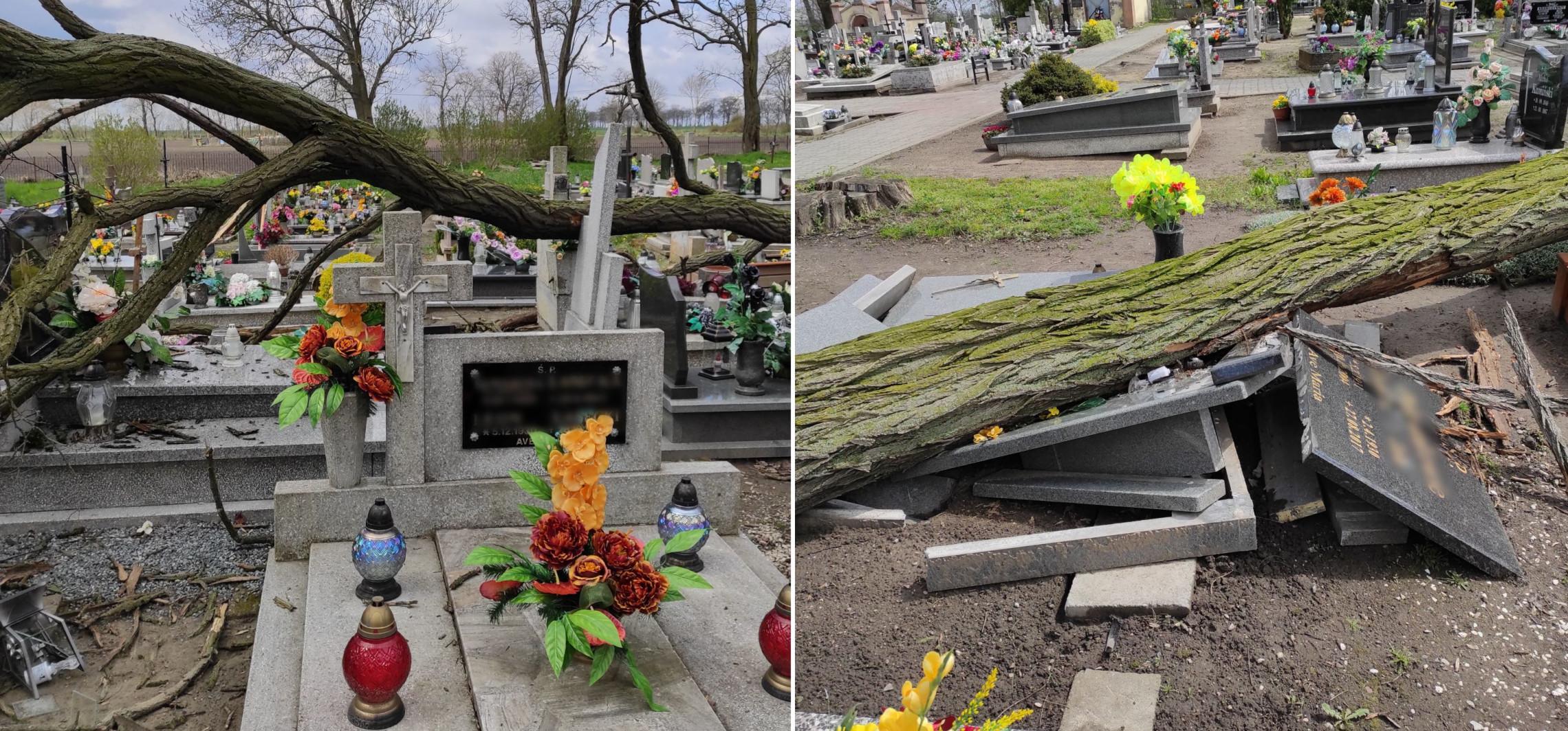 Region - Wichura powaliła drzewo na cmentarzu w regionie