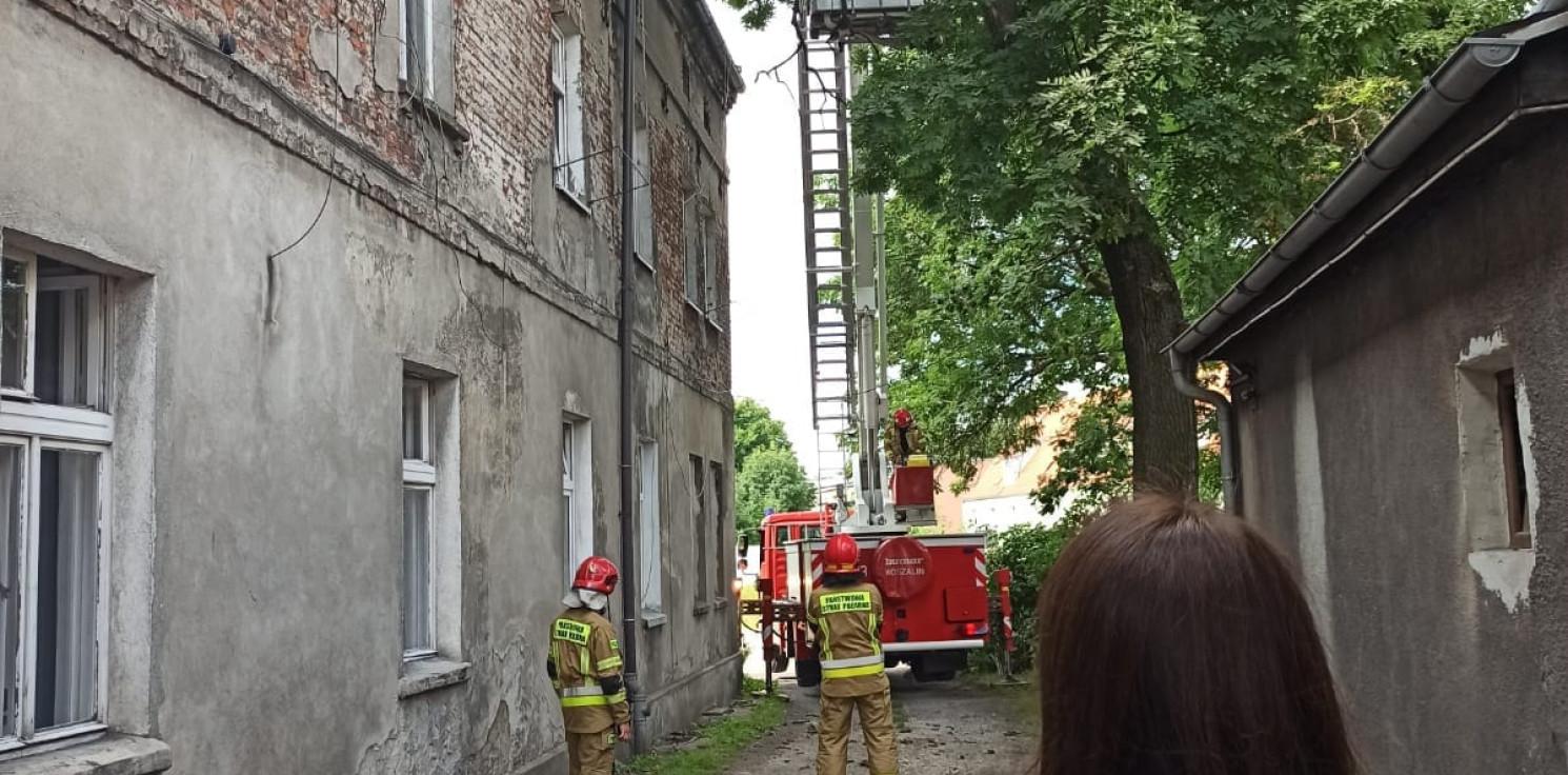 Inowrocław - Straż interweniowała ws. gałęzi. Będzie bezpieczniej