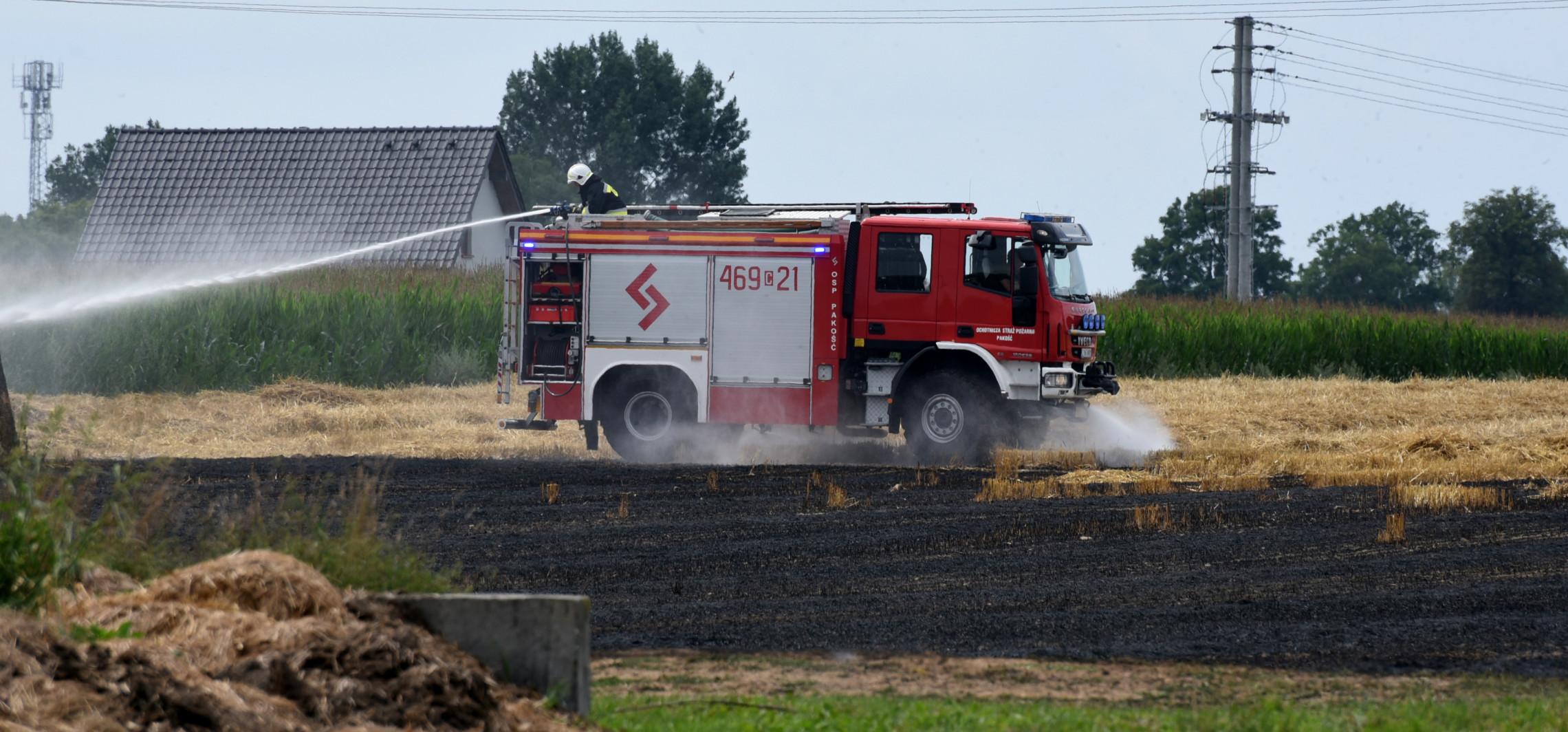Pakość - Pożar na polu koło Pakości. Strażacy w akcji