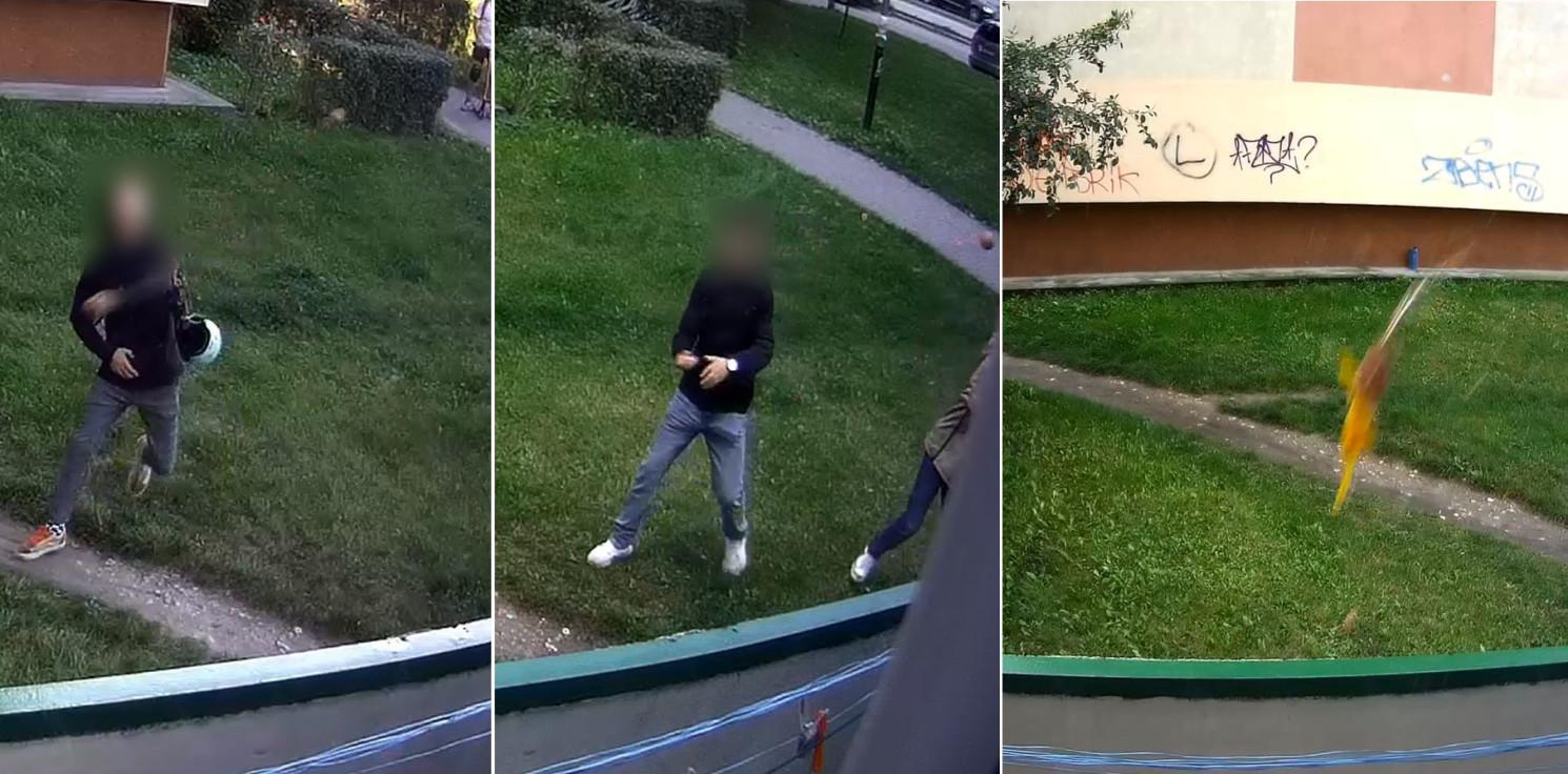 Inowrocław - Obrzucają okna jajkami. Nagrał ich monitoring