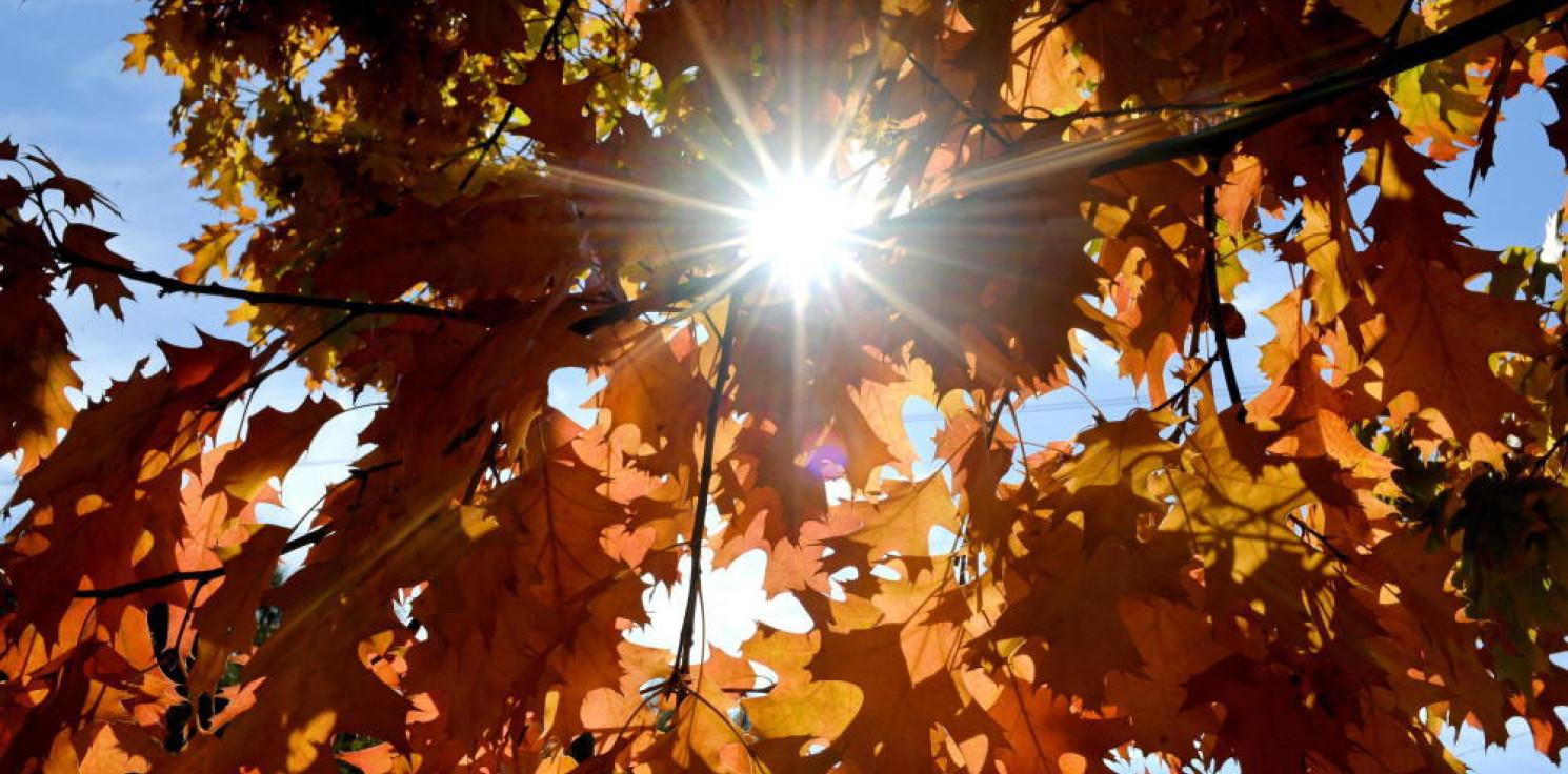 Kraj - Tygodniowa prognoza pogody: będzie chłodno, ale słonecznie