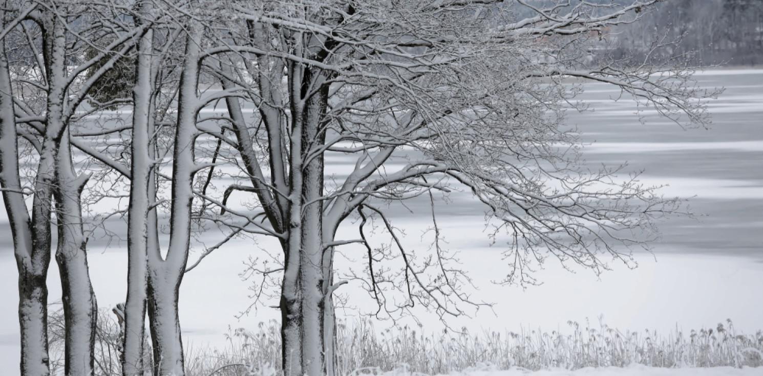 Kraj - Eksperymentalna prognoza IMGW: listopad bardziej deszczowy, w styczniu i lutym prawdziwa zima