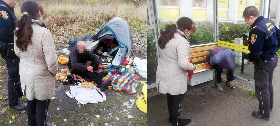 Koczują w namiotach, śpią owinięci w dywan...