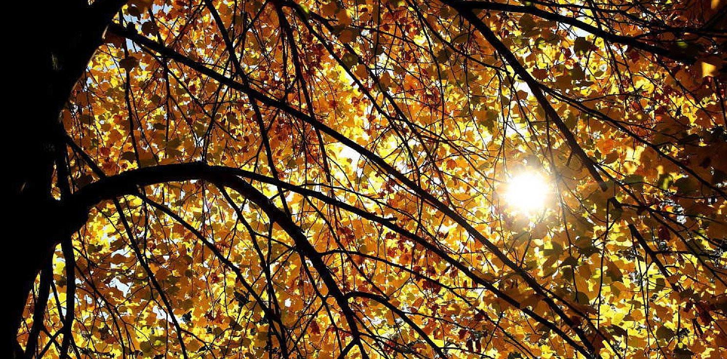 Kraj - We wtorek rozpocznie się astronomiczna jesień