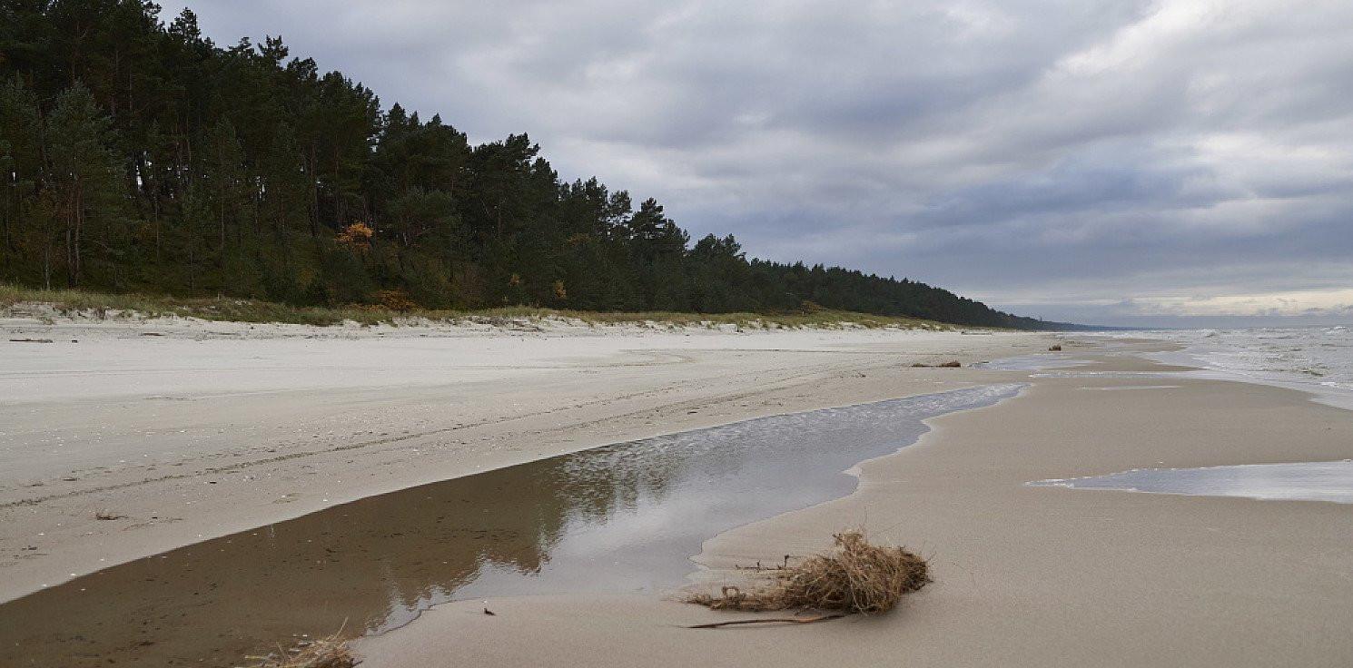 Kraj - Sanepid: jakość wody u ujścia Wisły odpowiada wymaganiom sanitarnym