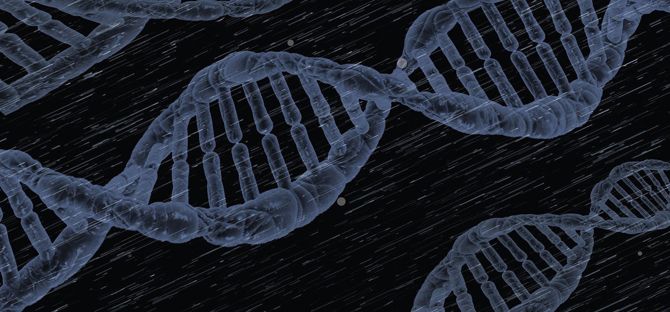 Geny od neandertalczyków to większa podatność na Covid-19