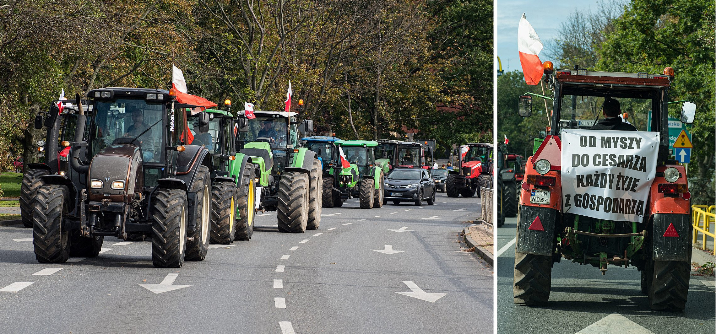 Inowrocław - Protestujący rolnicy na ulicach Inowrocławia [video]