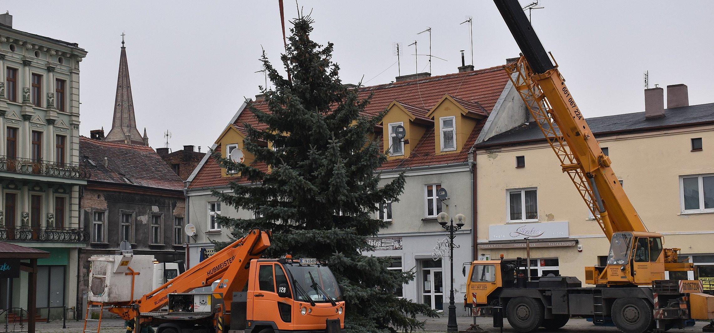 Inowrocław - Świąteczna choinka stanęła na Rynku